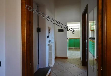Image for FIRENZE, PIAZZA DELLA SIGNORIA